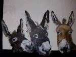 3 donkies
