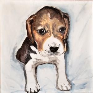little beagle Tasco